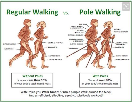 Nordic Walking - Benefits